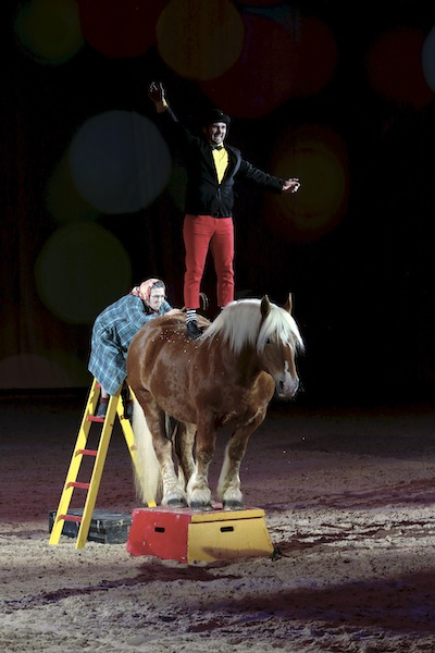 Cheval passion sequence humour